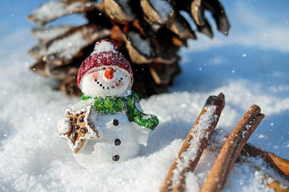 В парке Сокольники слепили оригинальных снеговиков