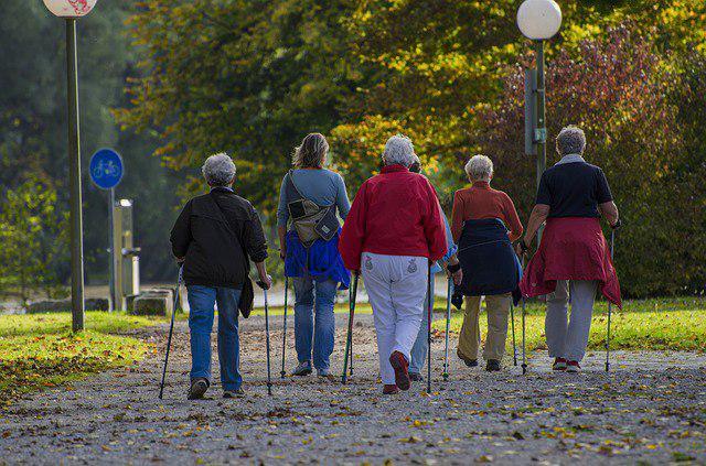 Жители Сокольников поучаствовали в фестивале скандинавской ходьбы