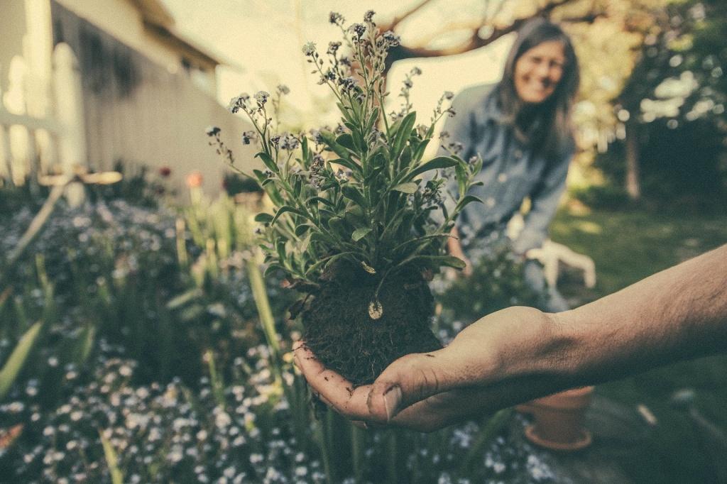 Семинар об экологических привычках пройдет в Букводоме