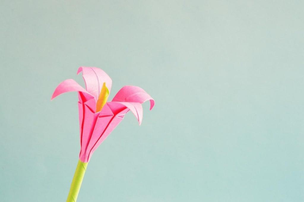 Школа в Сокольниках запустила конкурс «Цветок добра»